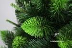 vianočné stromčeky borovice