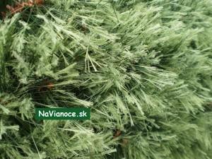 luxusné vianočné stromčeky