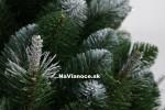 borovicový vianočný stromček