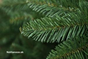 Smrek sibírsky, vianočné stromčeky.