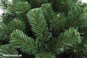 Vianočný stromček Borovica clasic hustá