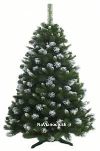 Zasnežené vianočné stromčeky – zasnežené borovice