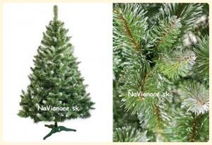 vianočné stromčeky s bielymi koncami
