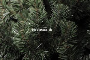 jedlička, vianočný stromček