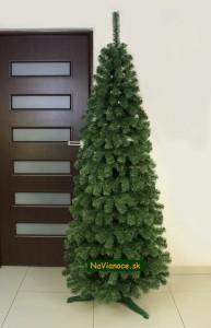 stromček na Vianoce Tuja