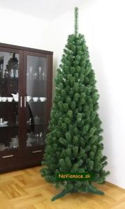 vianočný stromček Tuja na vianoce