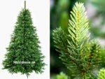 Vianočné stromčeky 100% 3d ihličie