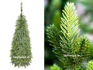 vianočné stromčeky Tuje full 3d ihličie