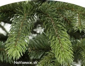 kvalitné 3d vianočné stromčeky